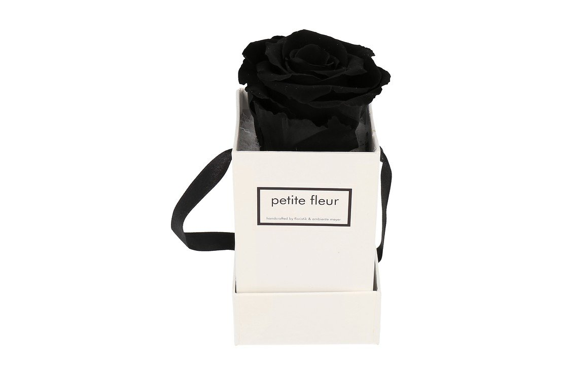 Petite Fleur Flowerbox Infinity Rosen XS quadratisch in Schwarz mit 1 Rose - Pic 1
